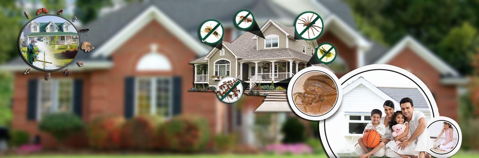 Villa Pest Control